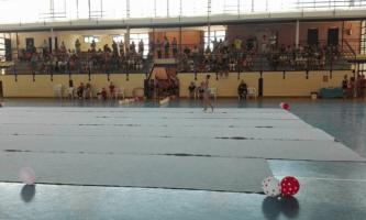 escuela gimnasia